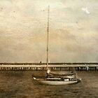 Sailing © by Dawn Becker