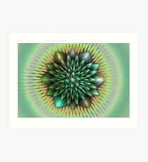 Rainbow Feathers Art Print