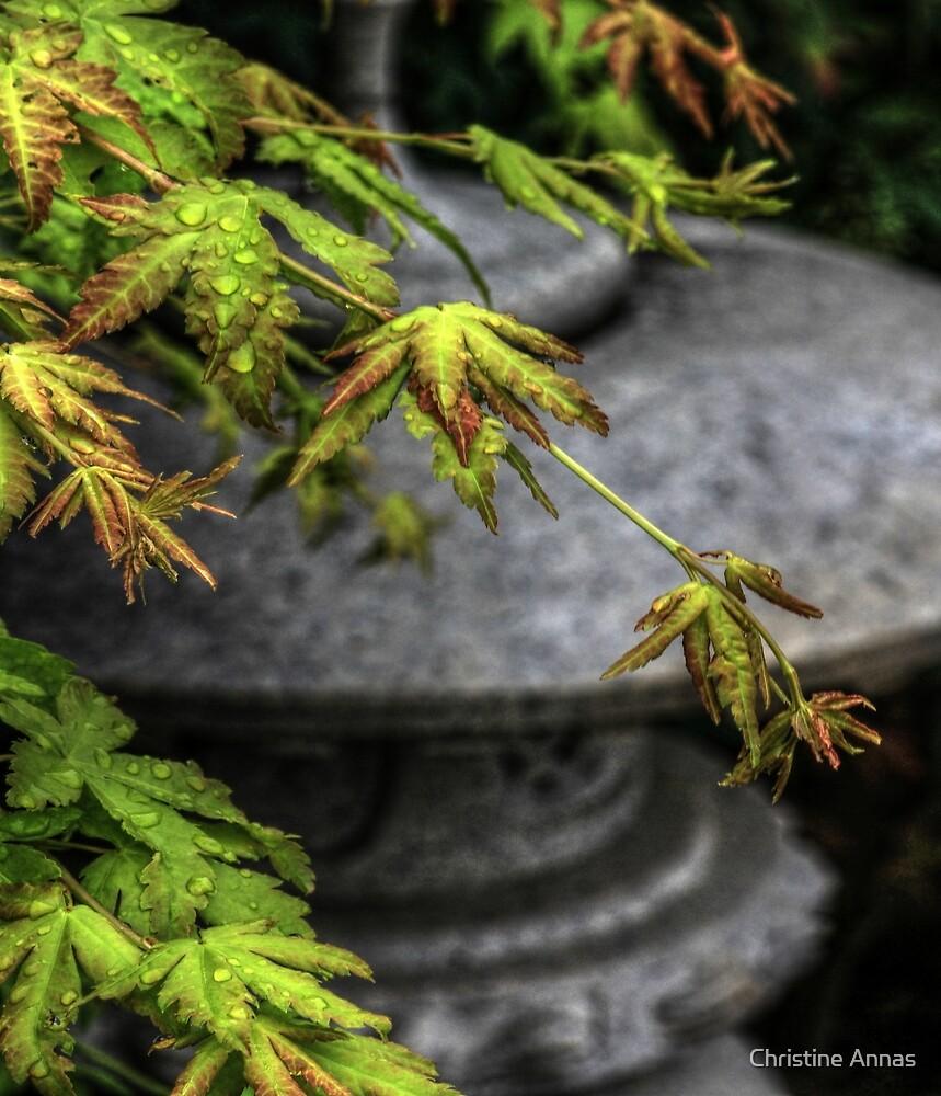 In A Japanese Garden by Christine Annas