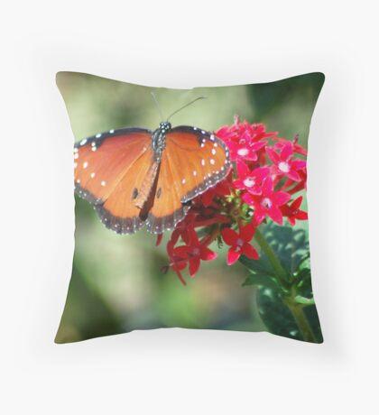 Butterfly album, butterfly Nr. 2 Throw Pillow
