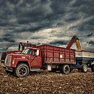 The Old Grain Truck by Steve Baird