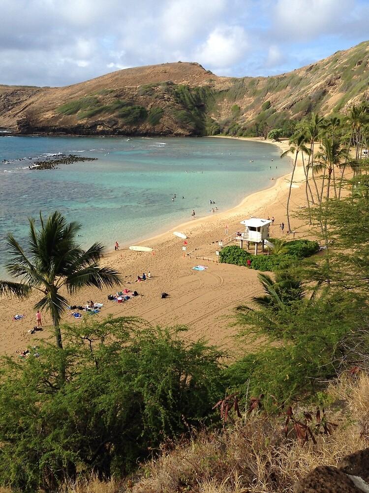 Hanauma Bay, Oahu, Hawaii  by ElasticEARTH