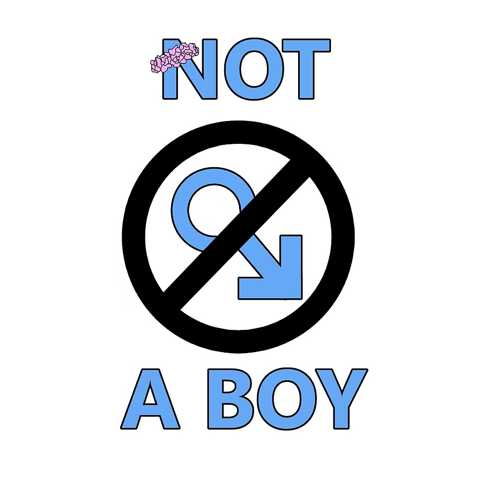 Not A Boy by Danny Perrier
