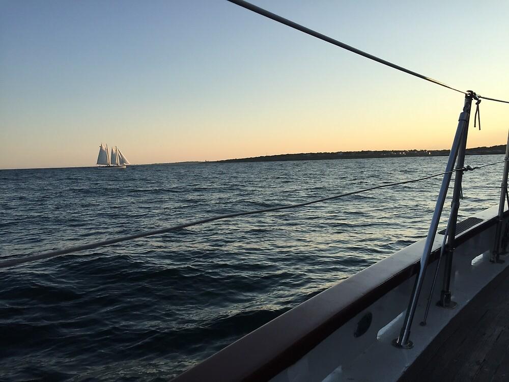 Newport Sailboat at Sunset by meganmfox