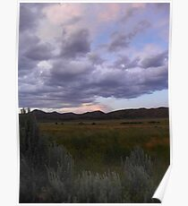 Sagebrush Country Poster