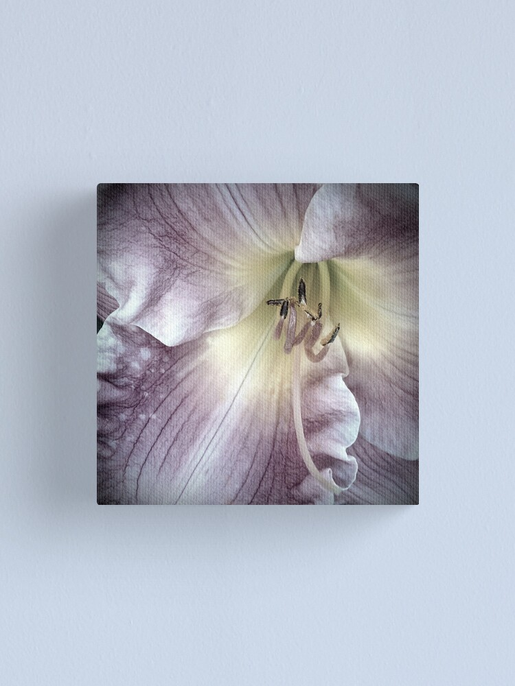 Alternate view of Pink Lily Close Up Canvas Print