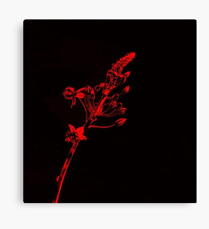 Glowing Red Flowers Canvas Print