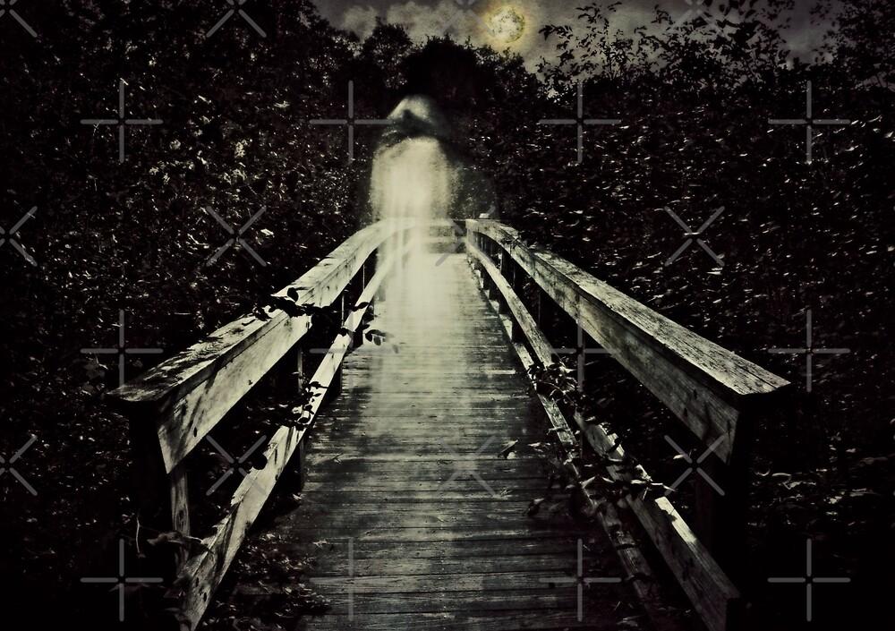 The Watcher on the Bridge by Scott Mitchell
