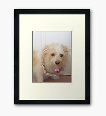 please don't take my picture  Framed Print