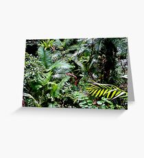 Tropical North Queensland Greeting Card