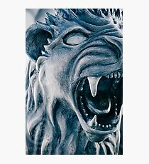 The Lion is Awake Photographic Print