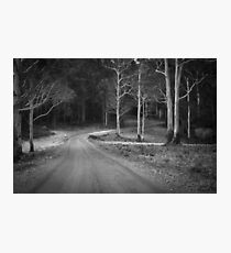 Macedon Regional Park Photographic Print