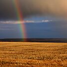 Gold...at the end of the Rainbow by James Anderson