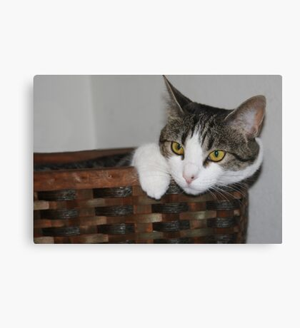 In Her Basket!! Canvas Print