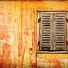 Window and amazing wall by Silvia Ganora