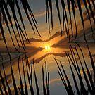 Crooked Sunrise by Christopher B Smyth