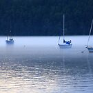 soft edges of sailing by TerrillWelch