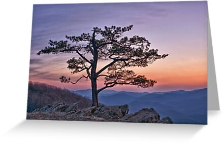 Twilight at Ravens Roost by Mary Jo Taft