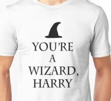 You're a wizard, Harry - Keep Calm Parody (light version) Unisex T-Shirt