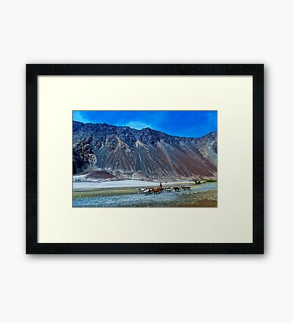 The Beauty of Nature in Laddakh-2/2011 Framed Print
