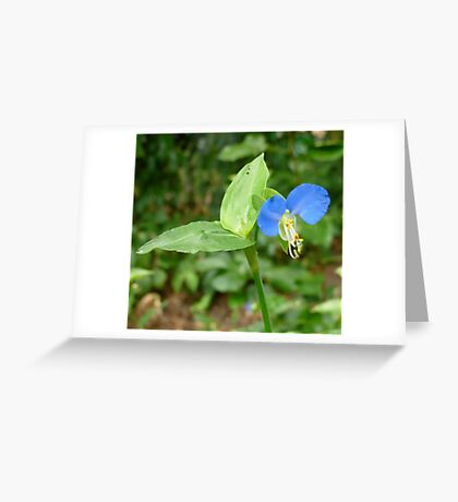 Sparkling Blue Greeting Card
