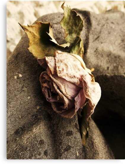Unrequited Love 2 by rualexa