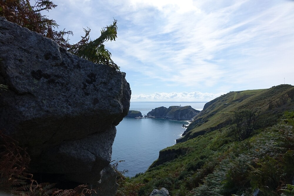 Lundy Island by frogs123