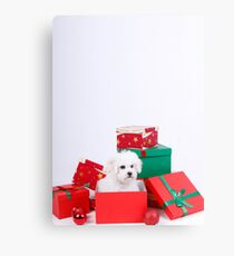 What do you want for Xmas ???? Canvas Print