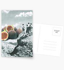 Fig dreams  Postcards