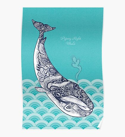 Pypmy Right Whale Poster