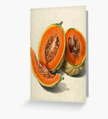 Vintage Vector Style Thanksgiving Pumpkin Slices Greeting Card