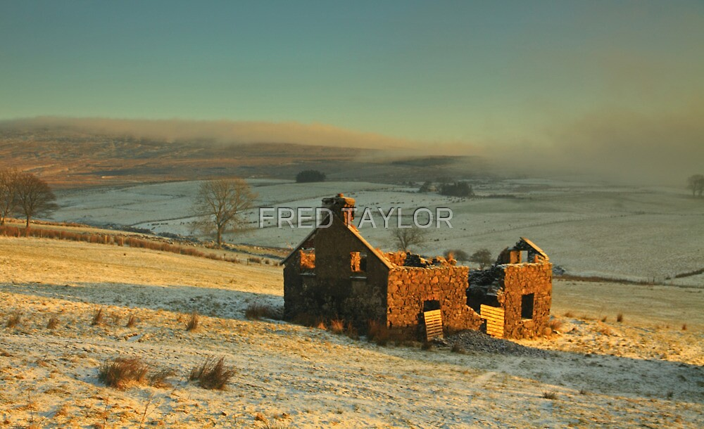 Derelict house sitting quietly among the fields.  by FRED TAYLOR