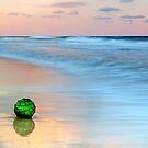The Green Ball by Ann  Van Breemen