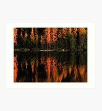 Brewer Lake Evening Light Art Print