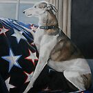 Waiting Whippet by Charlotte Yealey