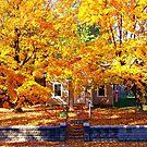 Golden Days of Autumn by Grinch/R. Pross