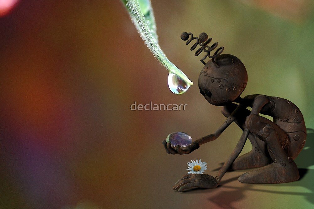 Water by Declan Carr