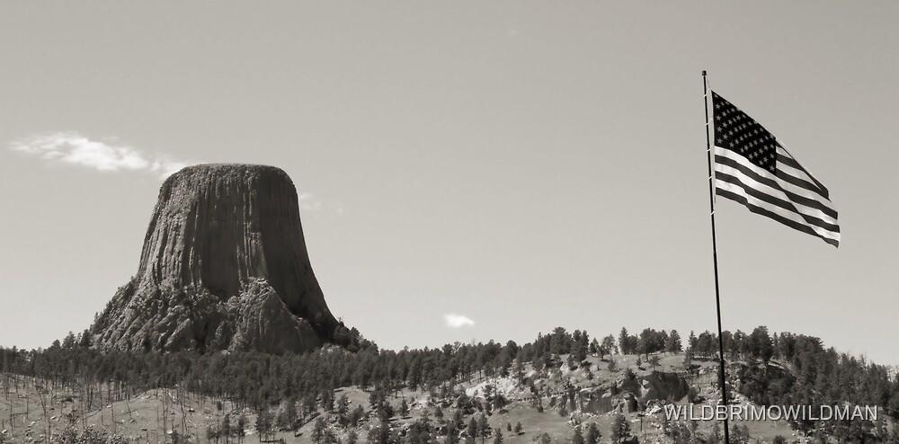 Devils Tower by WILDBRIMOWILDMAN