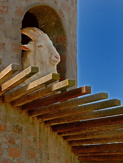 Goat in Tower by Leon Heyns