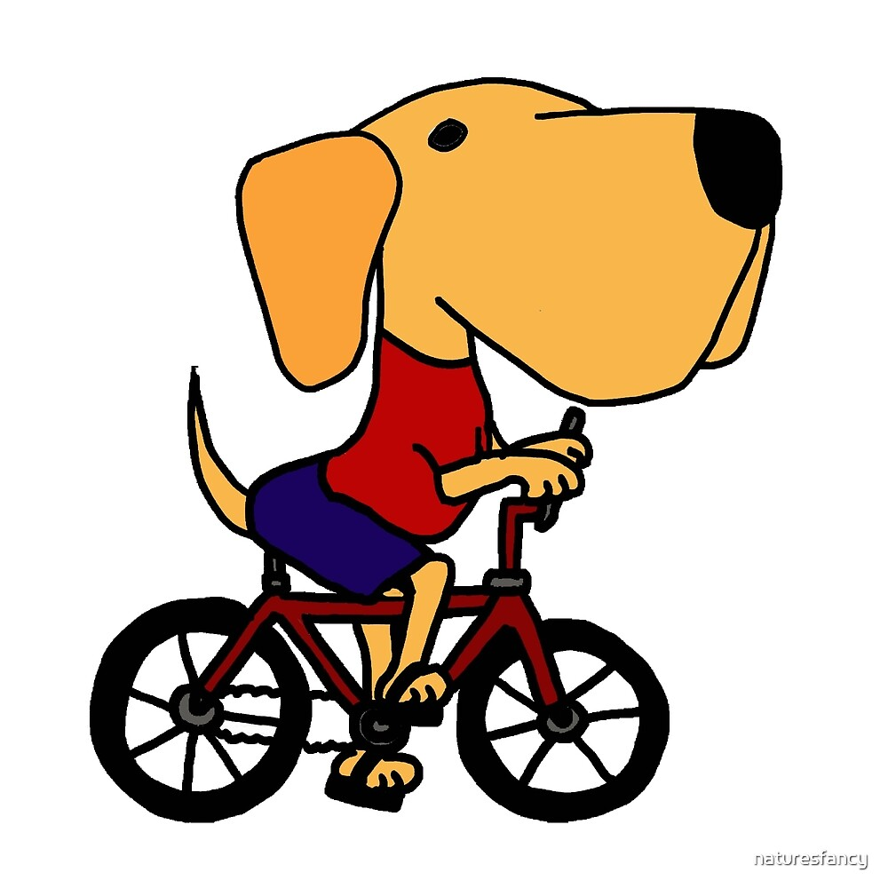 Funny Yellow Labrador Riding Bicycle by naturesfancy
