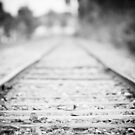 Journey by Rob Smith