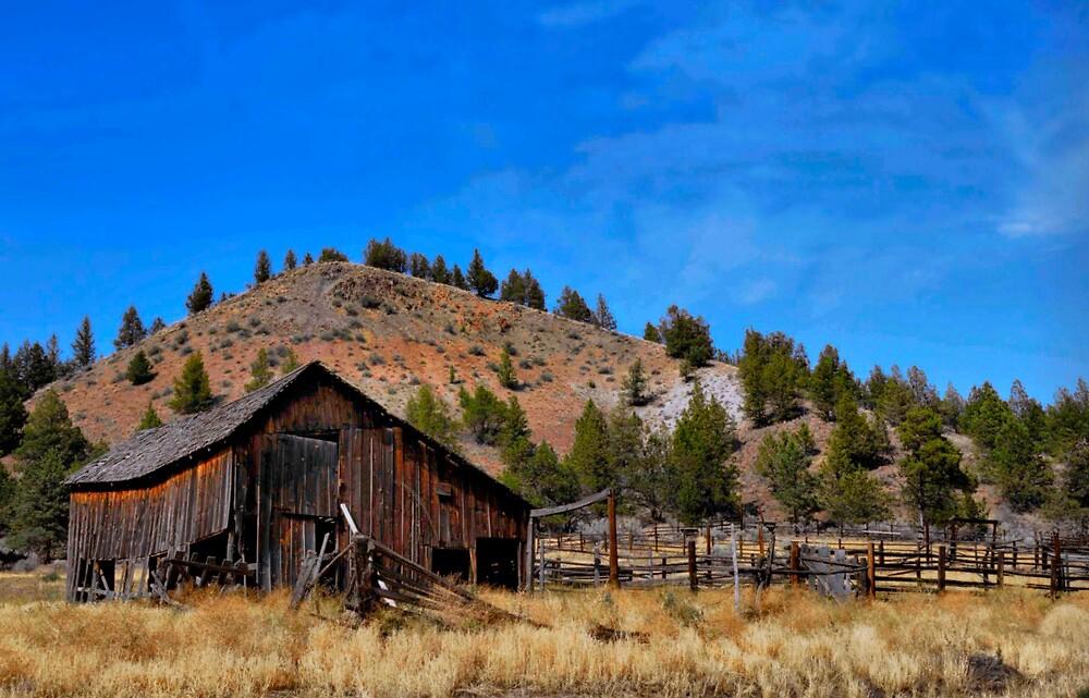 Shanako Barn by Charles & Patricia   Harkins ~ Picture Oregon