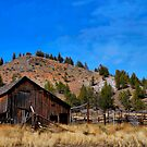 Shanako Barn by Charles & Patricia   Harkins ~ Picture Oregon