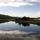 Double Sight - Swan Park Bellerena Co Derry Ireland  by mikequigley