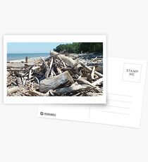 Postales Dunkirk Driftwood