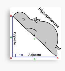 Math Humor Canvas Print