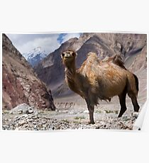 Gateway to the Karakoram Highway Poster
