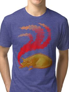 Snoring Dragon Tri-blend T-Shirt