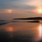 Sundog On The Strand by Wrayzo