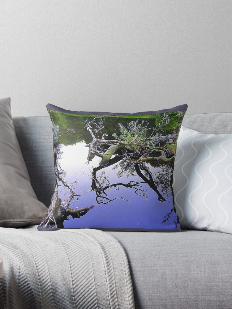 Fallen Tree Reflections................Most Products by Fara